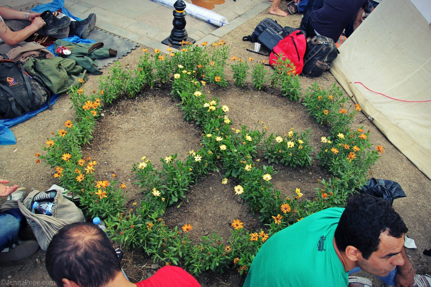 Flowers planted into a peace sign at the location in Gezi Park where the first few trees were cut down before the occupation and resistance in the park forced construction to end.